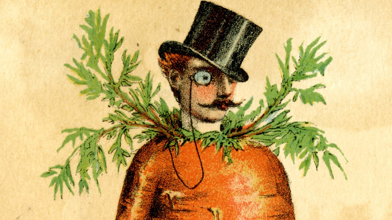 Illustration of a man combined with a carrot