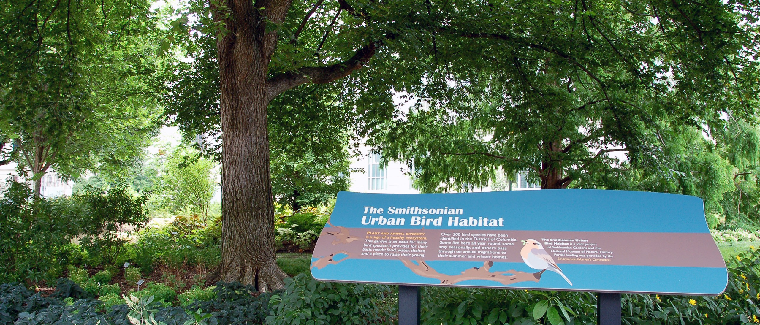 Teal welcome sign with bird on it at entrance to the Urban Bird Habitat