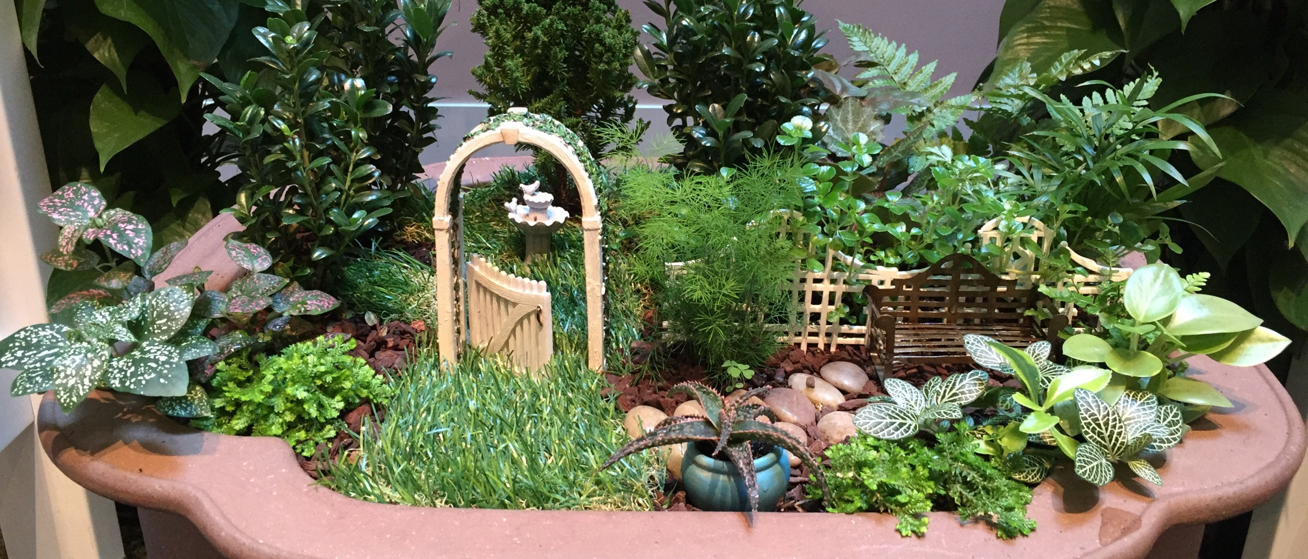 Miniature garden of moss, grass, and ferns with tiny garden gate, fence, birdbath, and bench in terracotta planter