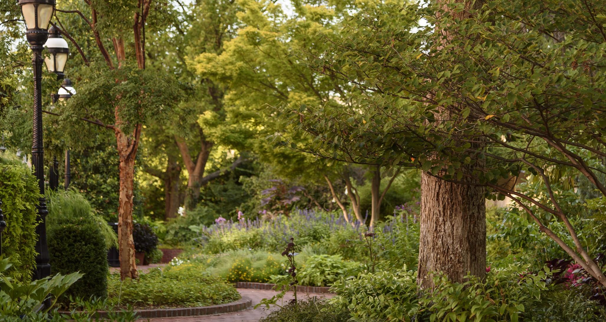 Mary Livingston Ripley Garden walkway