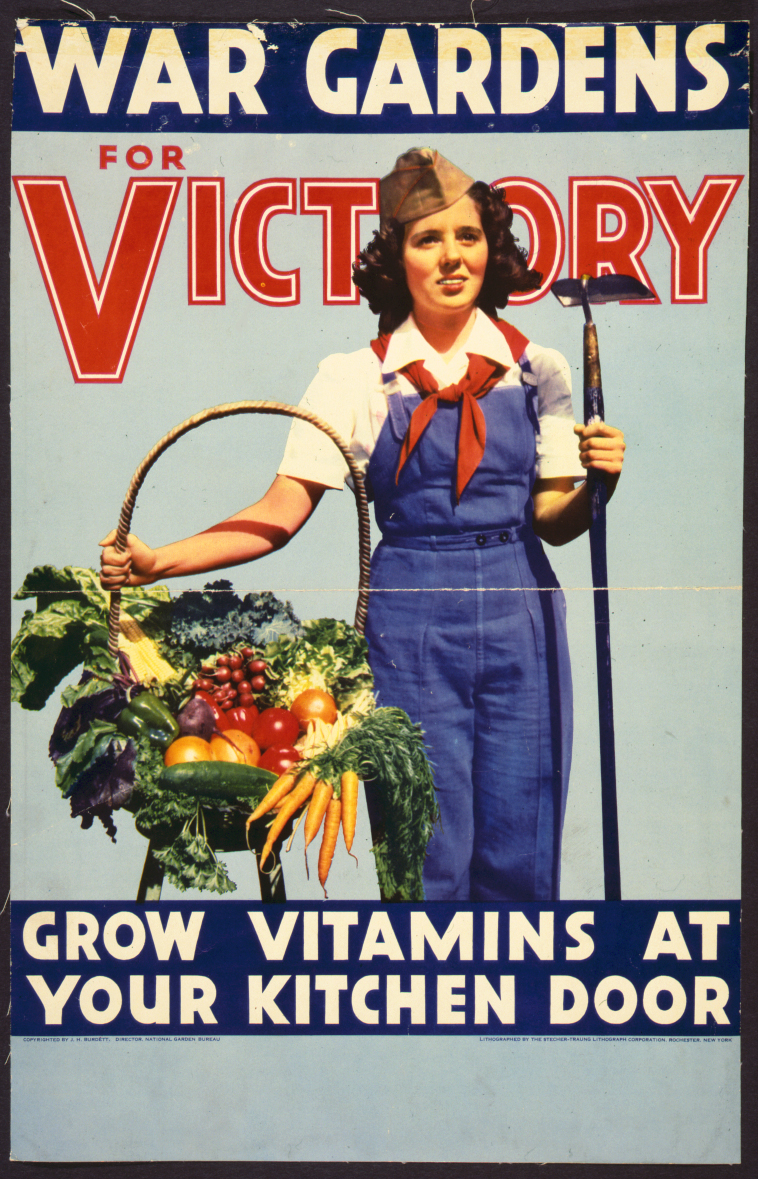 1942-1945  Victory Gardens
