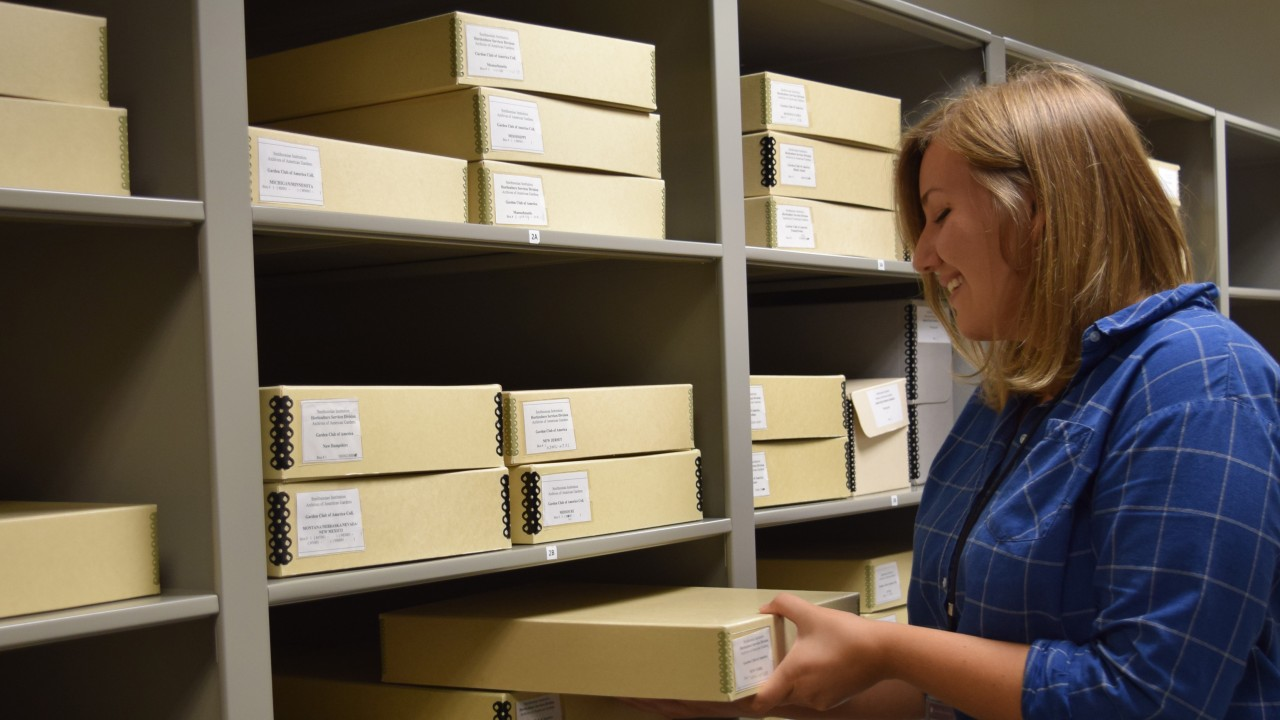 Intern in archive room
