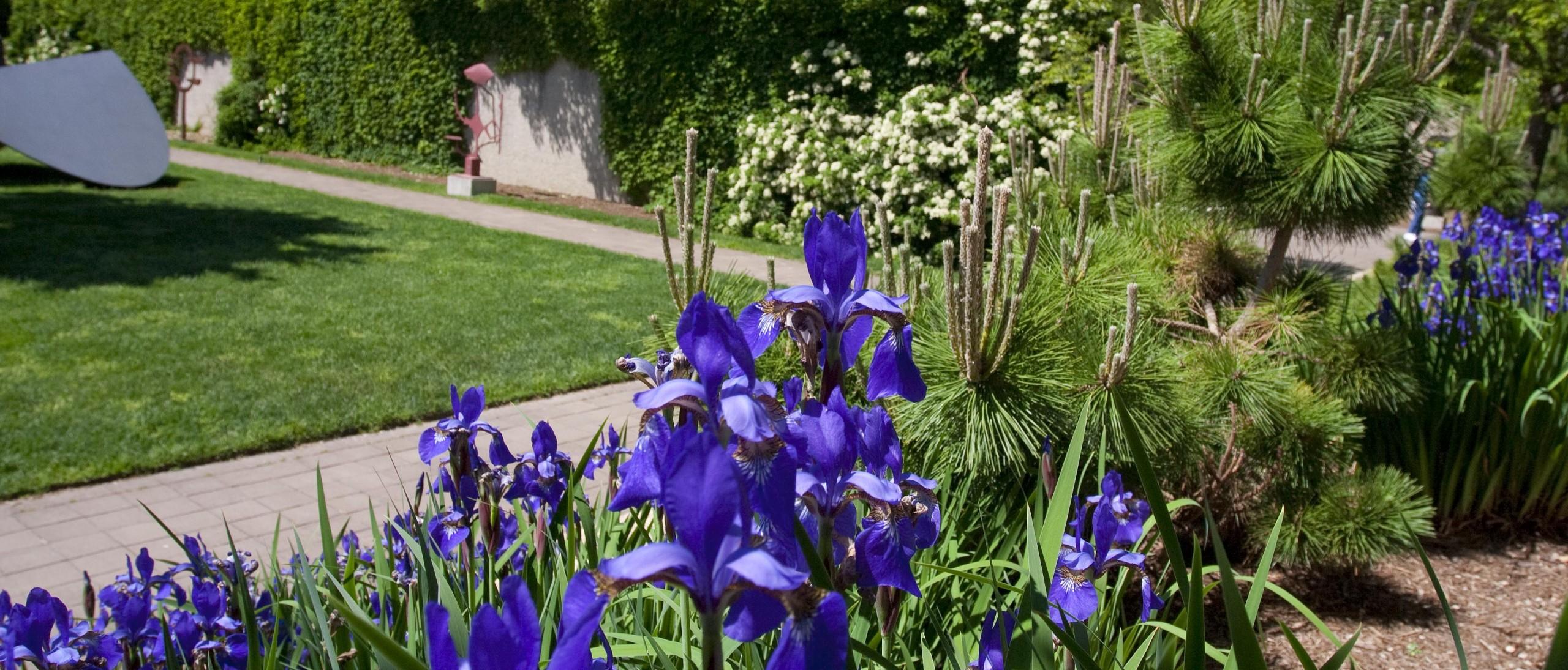 Hirshhorn Garden
