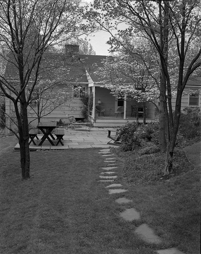 Black and white photograph of back exterior of house. Featuring a patio with a picnic table shaded by two trees.