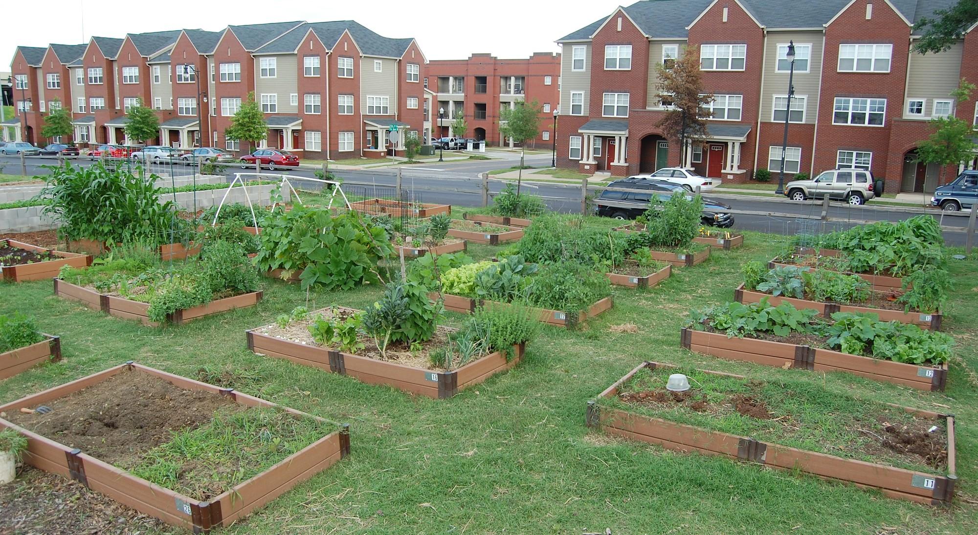 Jones Valley Urban Farm, community garden area with raised beds.