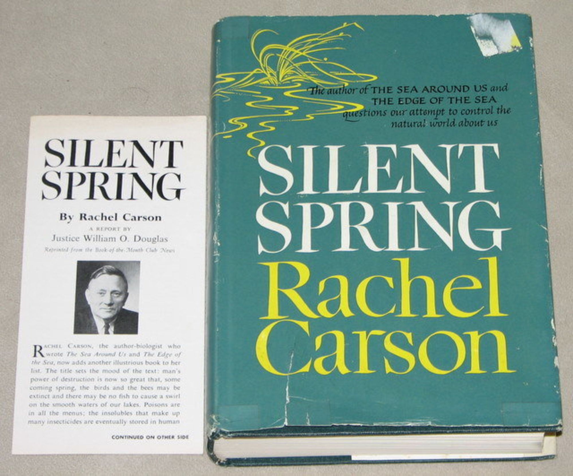 1962 Publication of Silent Spring