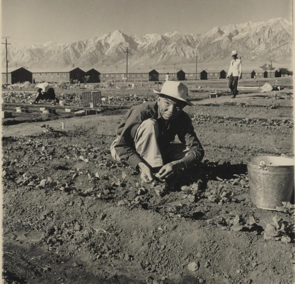 Photograph of Japanese man crouching to plant seeds. In the background are barracks and mountains.