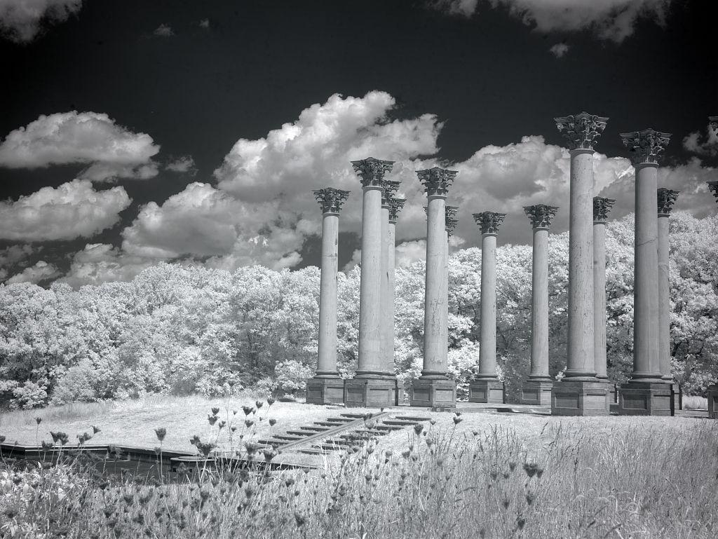1927 National Arboretum