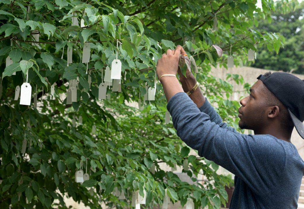Visitor tying paper wish to Yoko Ono Wish Tree for Washington, D.C.