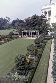 The White House Garden