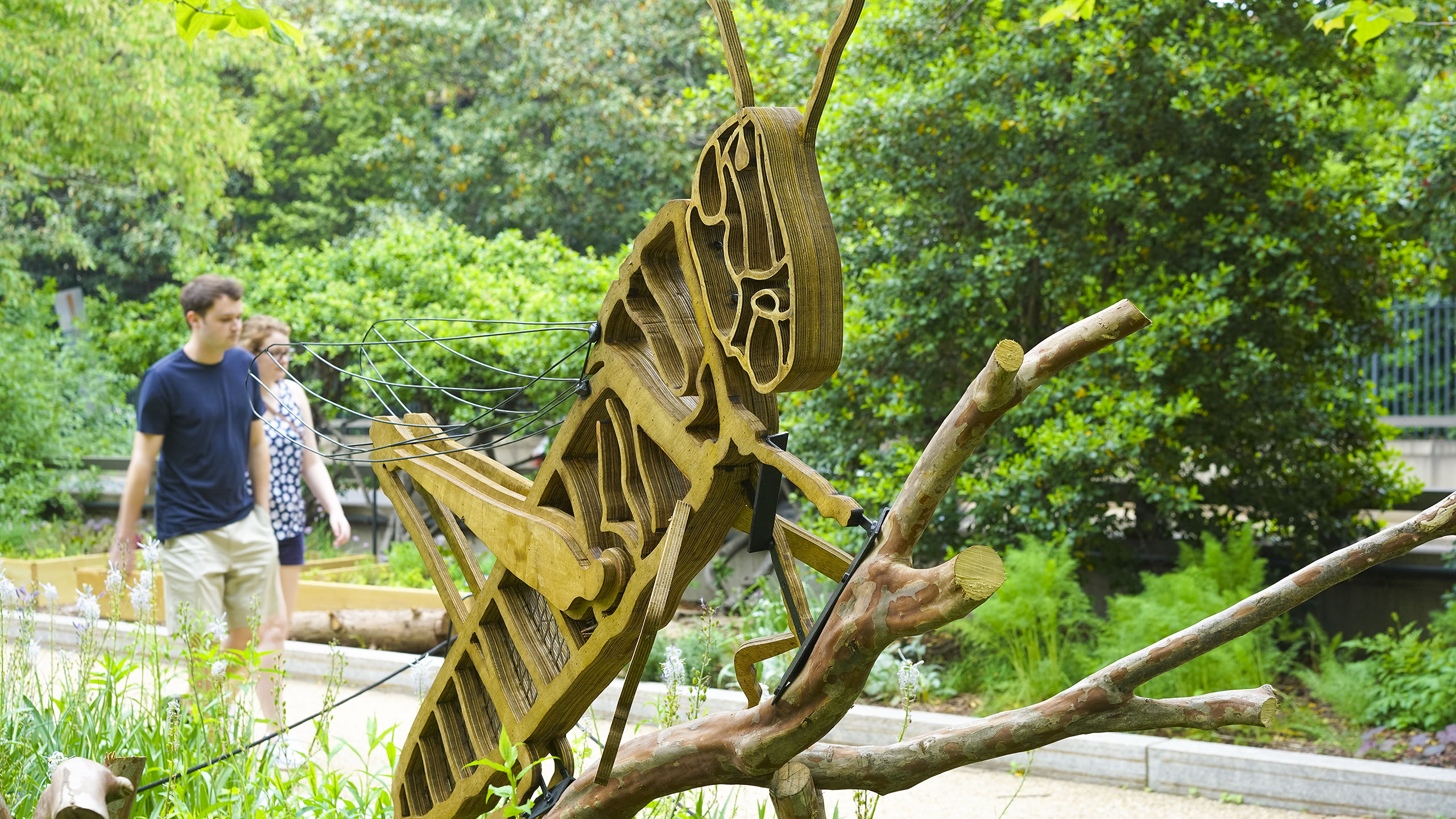 Bug sculpture outside of the National Museum of American History