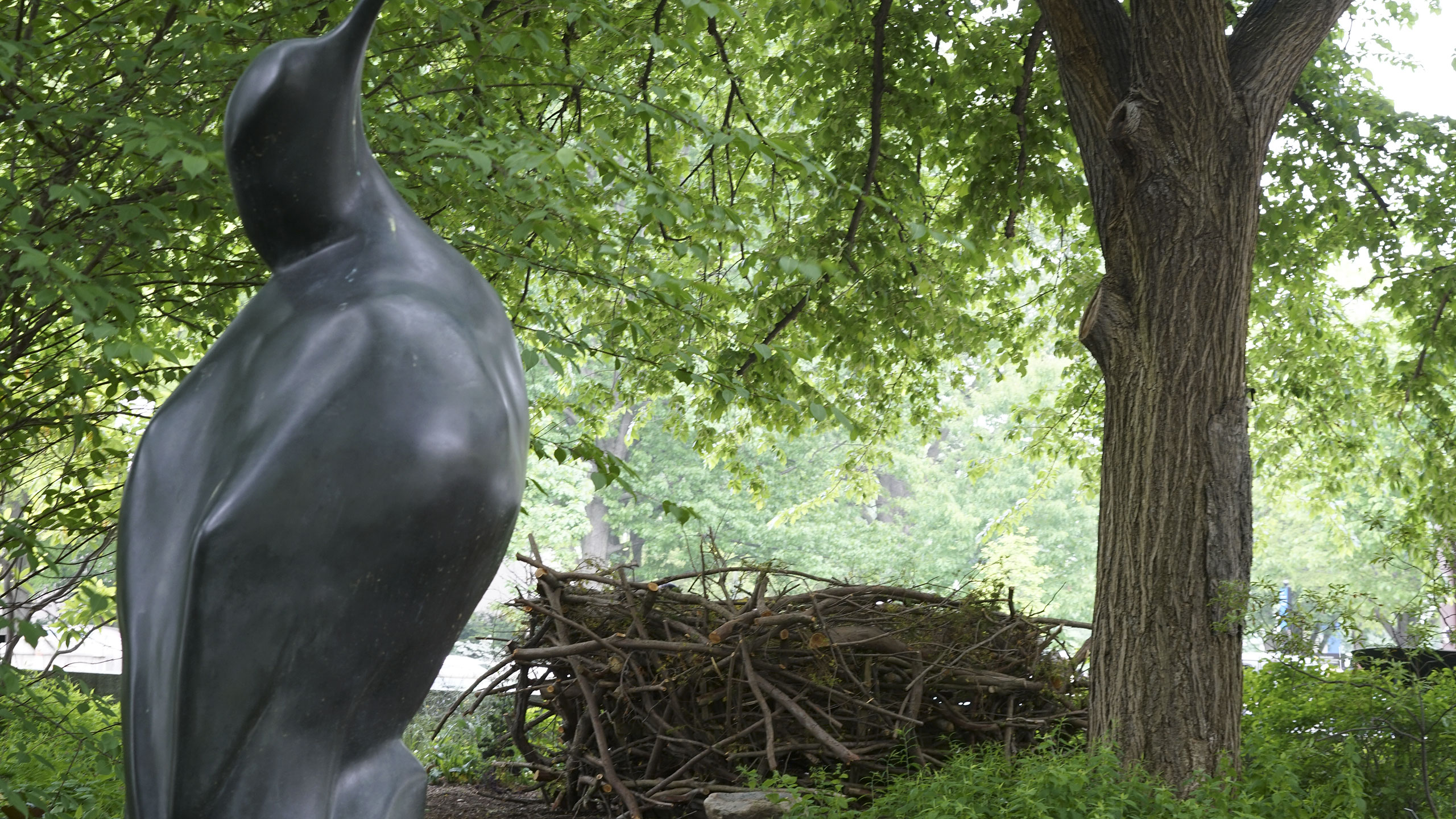 Nest installation in the Urban Bird Habitat outside of the National Museum of American History