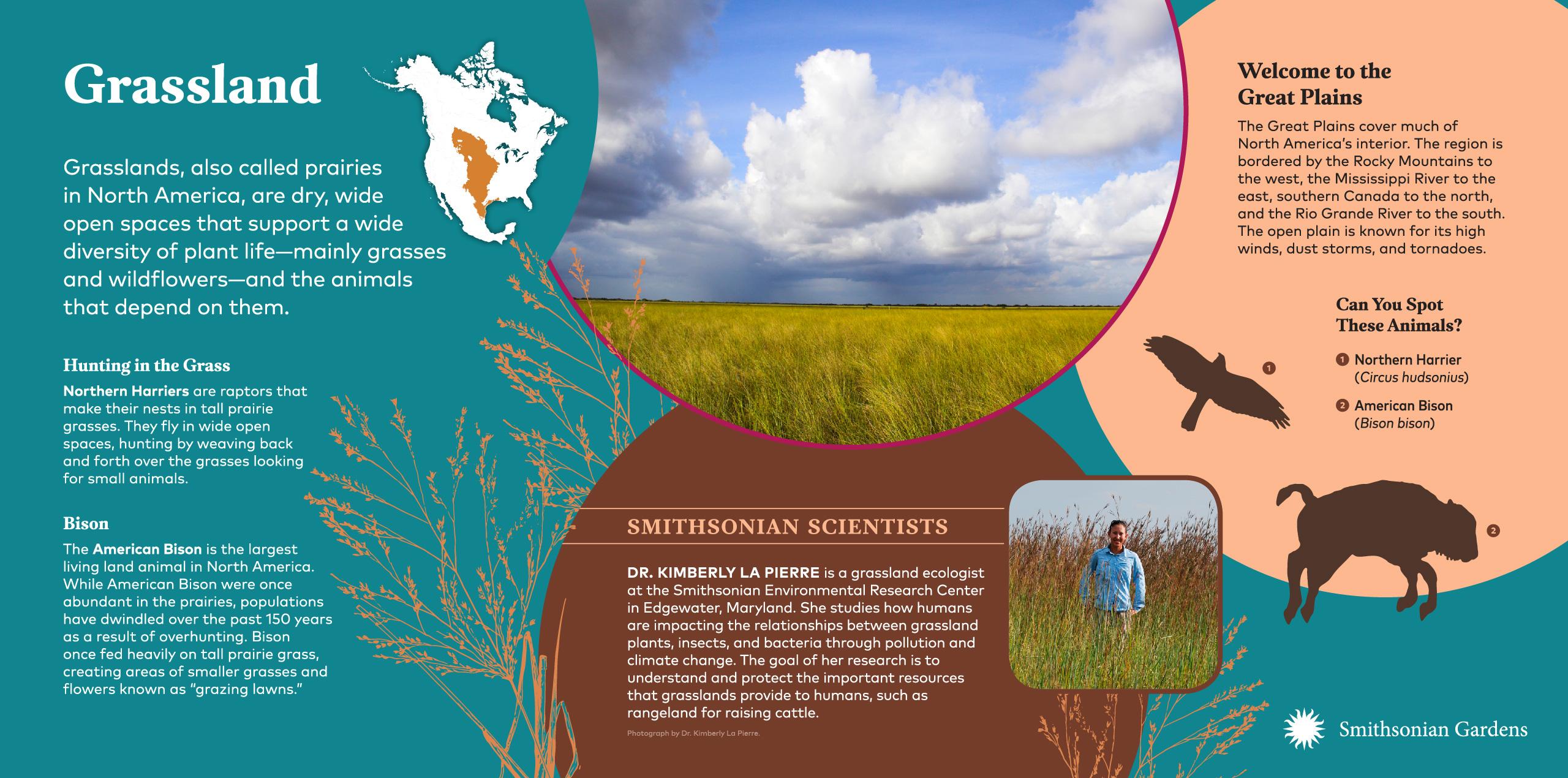 Grassland Biome exhibit panel