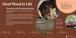 Dead Wood Is Life exhibit panel