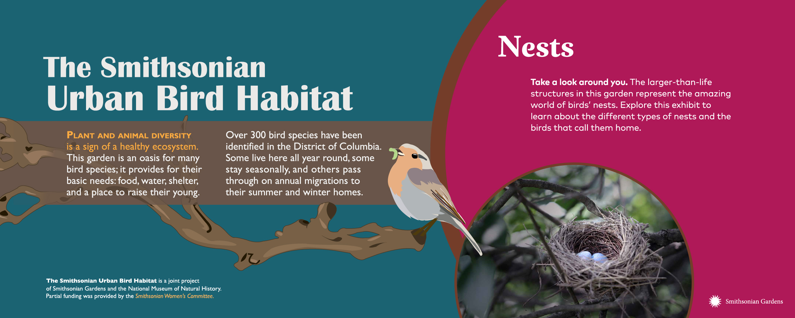 Smithsonian Urban Bird Habitat exhibit panel