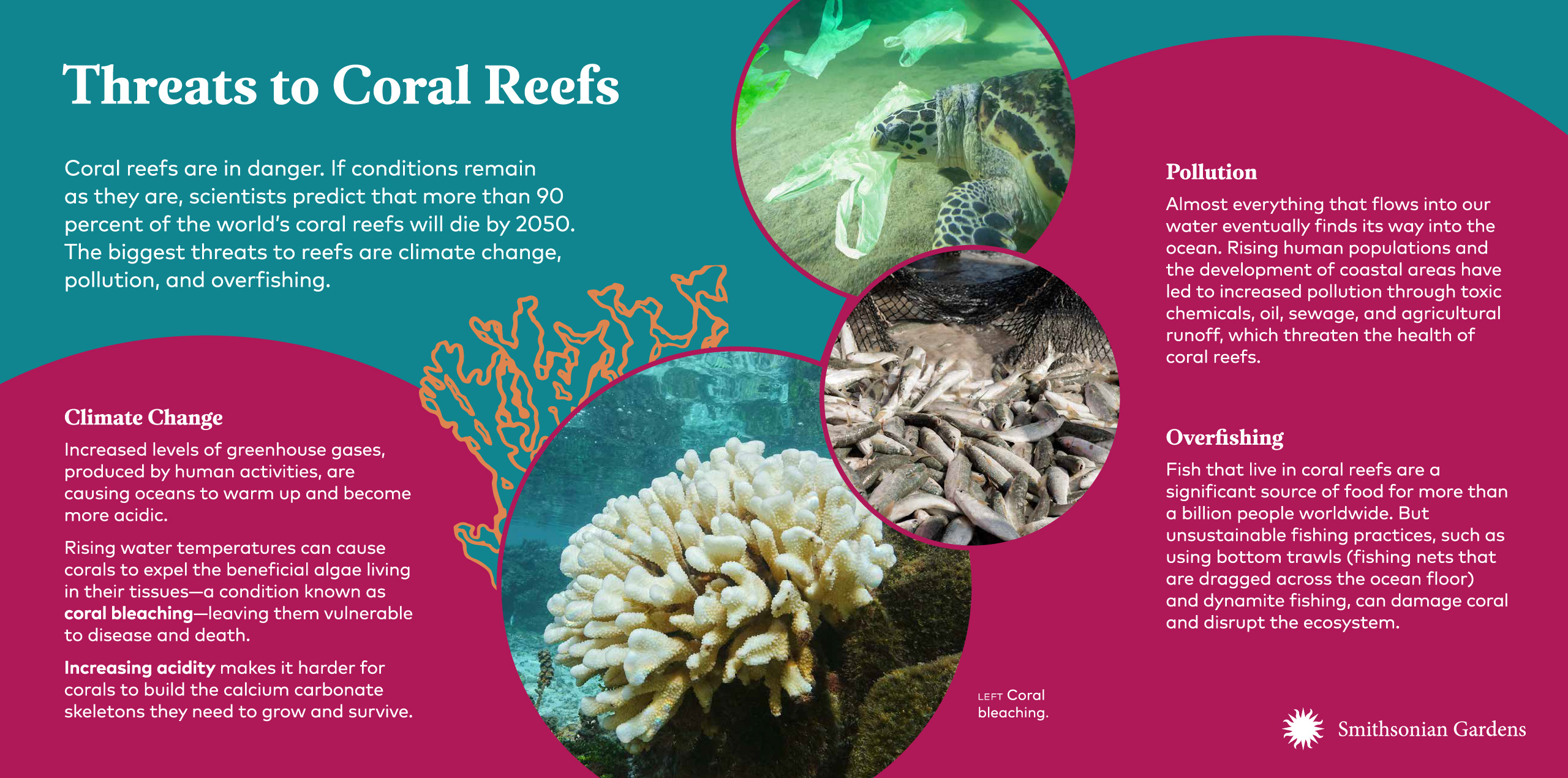 Threats to Coral Reefs exhibit panel