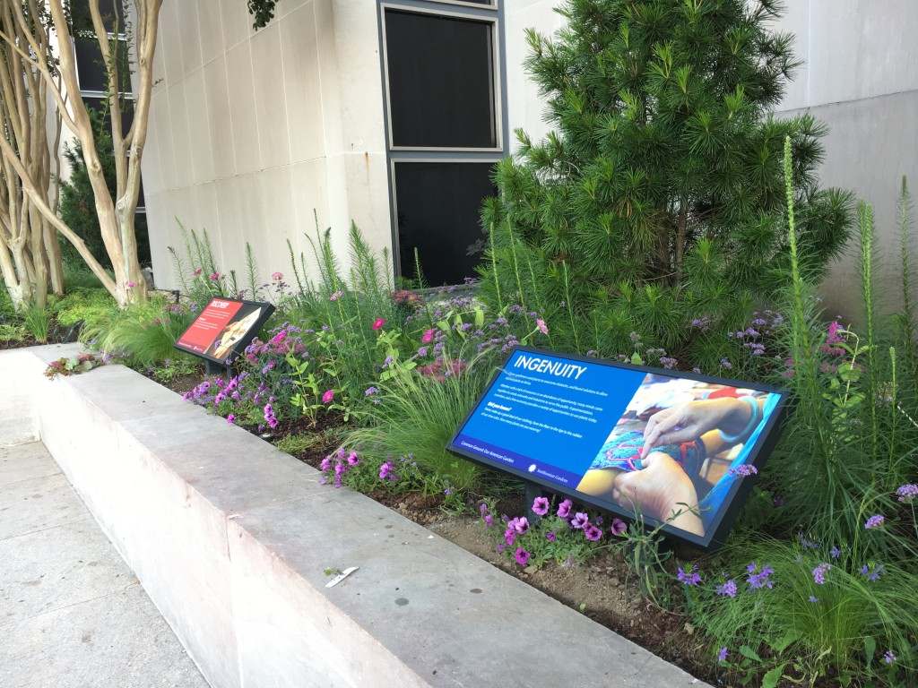 Exhbition signs raised planting bed of purple flowers with conifer in background.