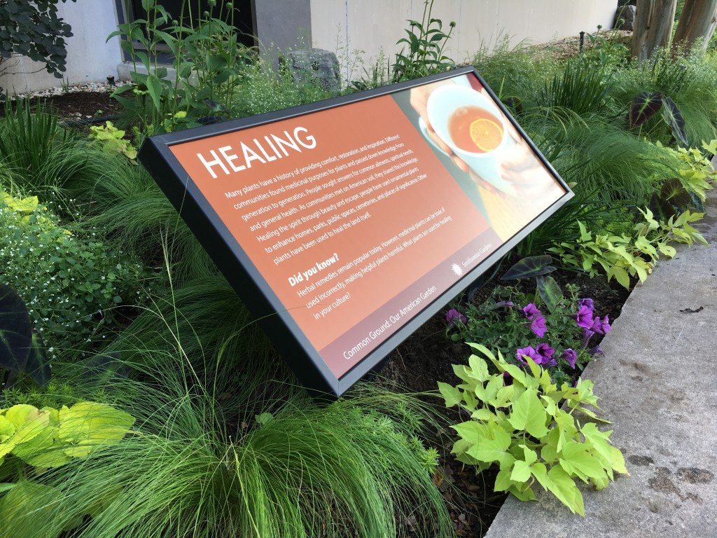Exhibit sign on healing plants surrounded by greenery and purple flowers in raised bed