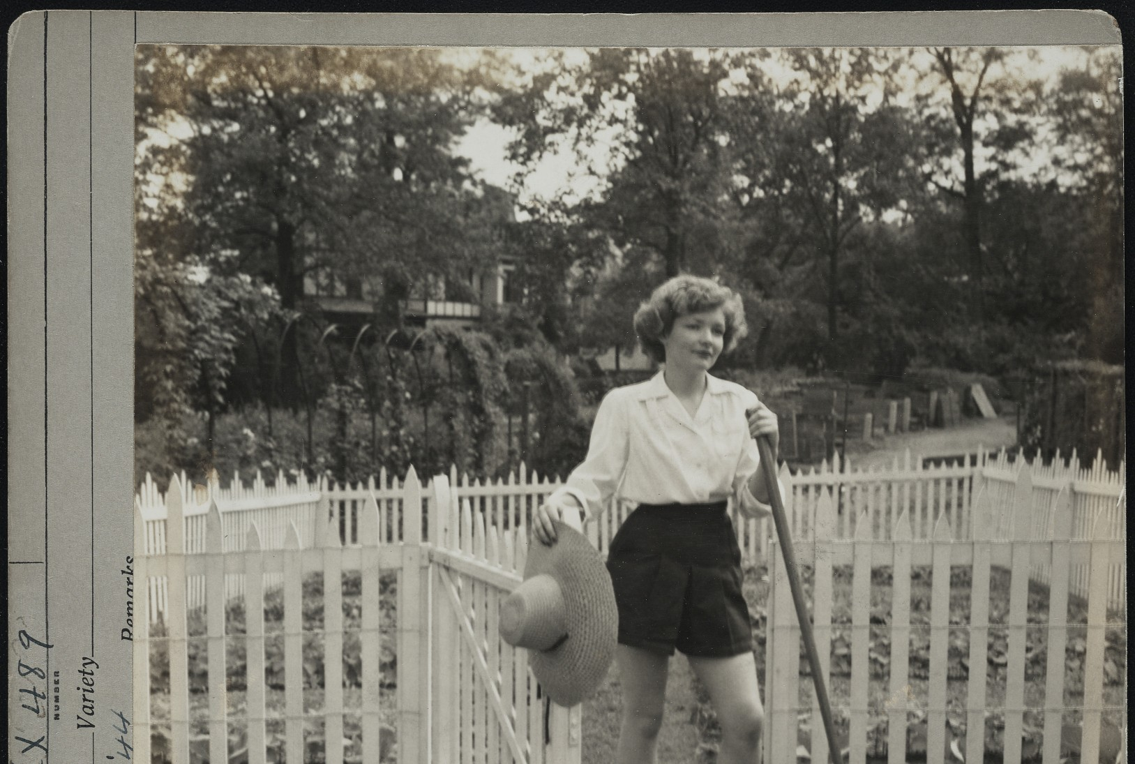 Vintage photo of woman holding a garden rake while opening gate in white picket fence surrounding a vegetable garden