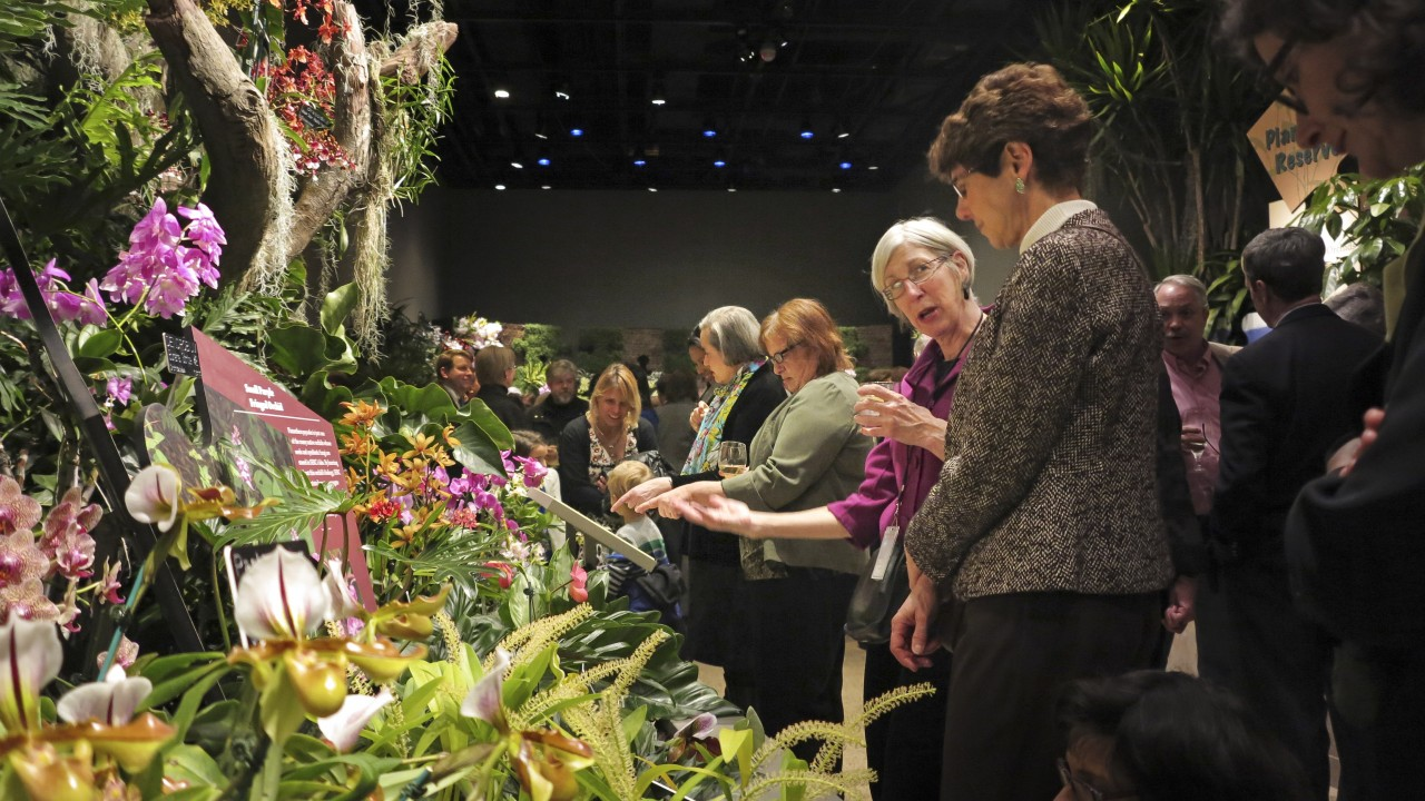 Two women examining a group of orchids in indoor orchid exhibit with other visitors in background