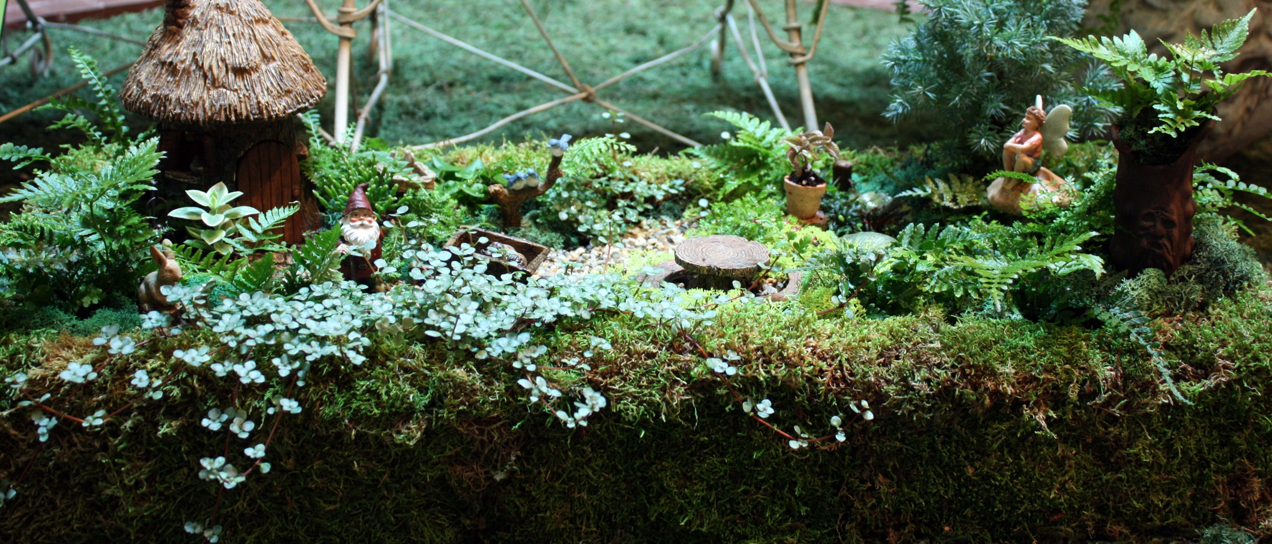 miniature garden with tiny gnome, fairy, and wheelbarrow figures