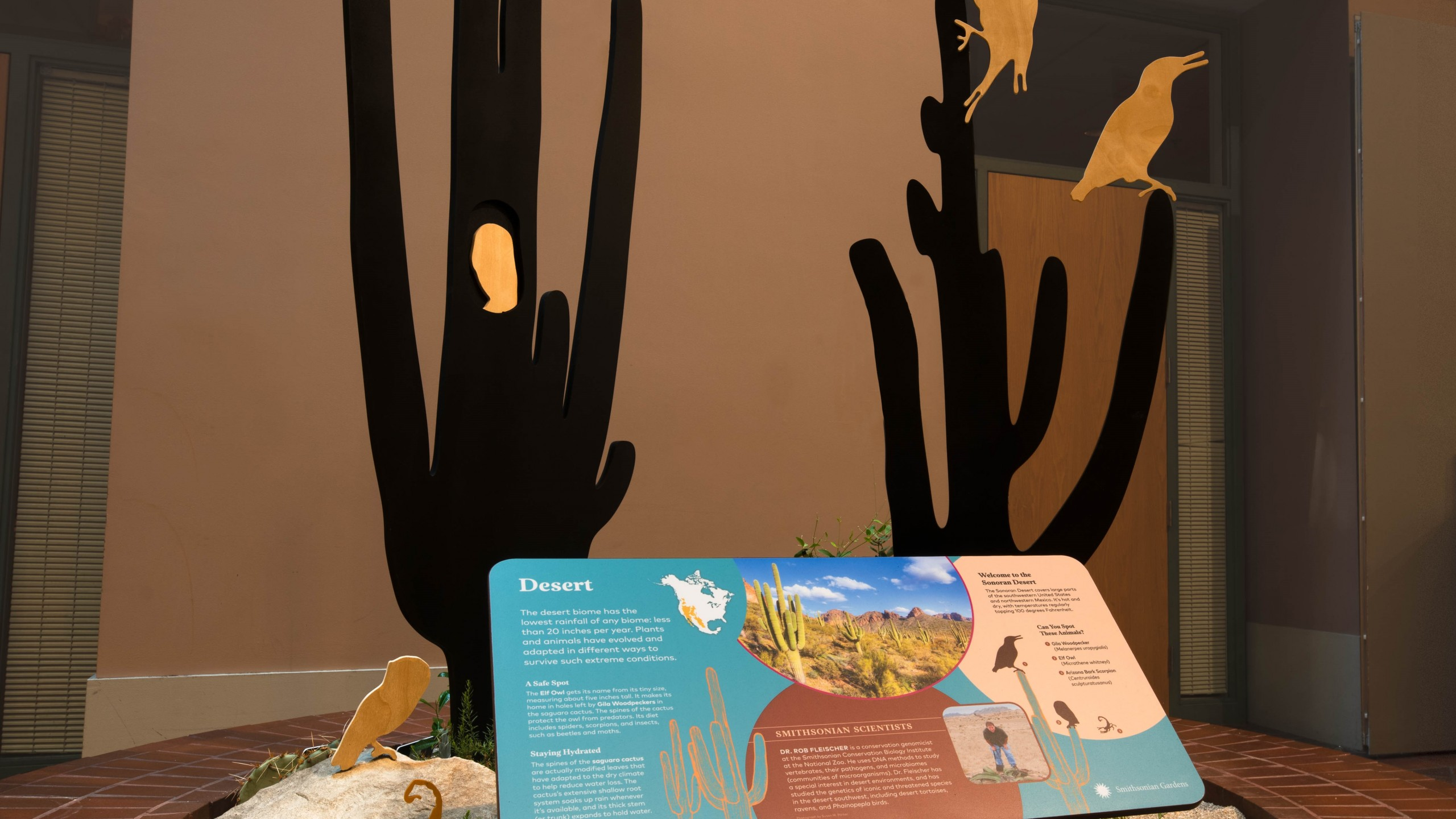 Biomes: Life in Balance inside the S. Dillon Ripley Center, Habitat Exhibition. Carolyn Thome, photographer.