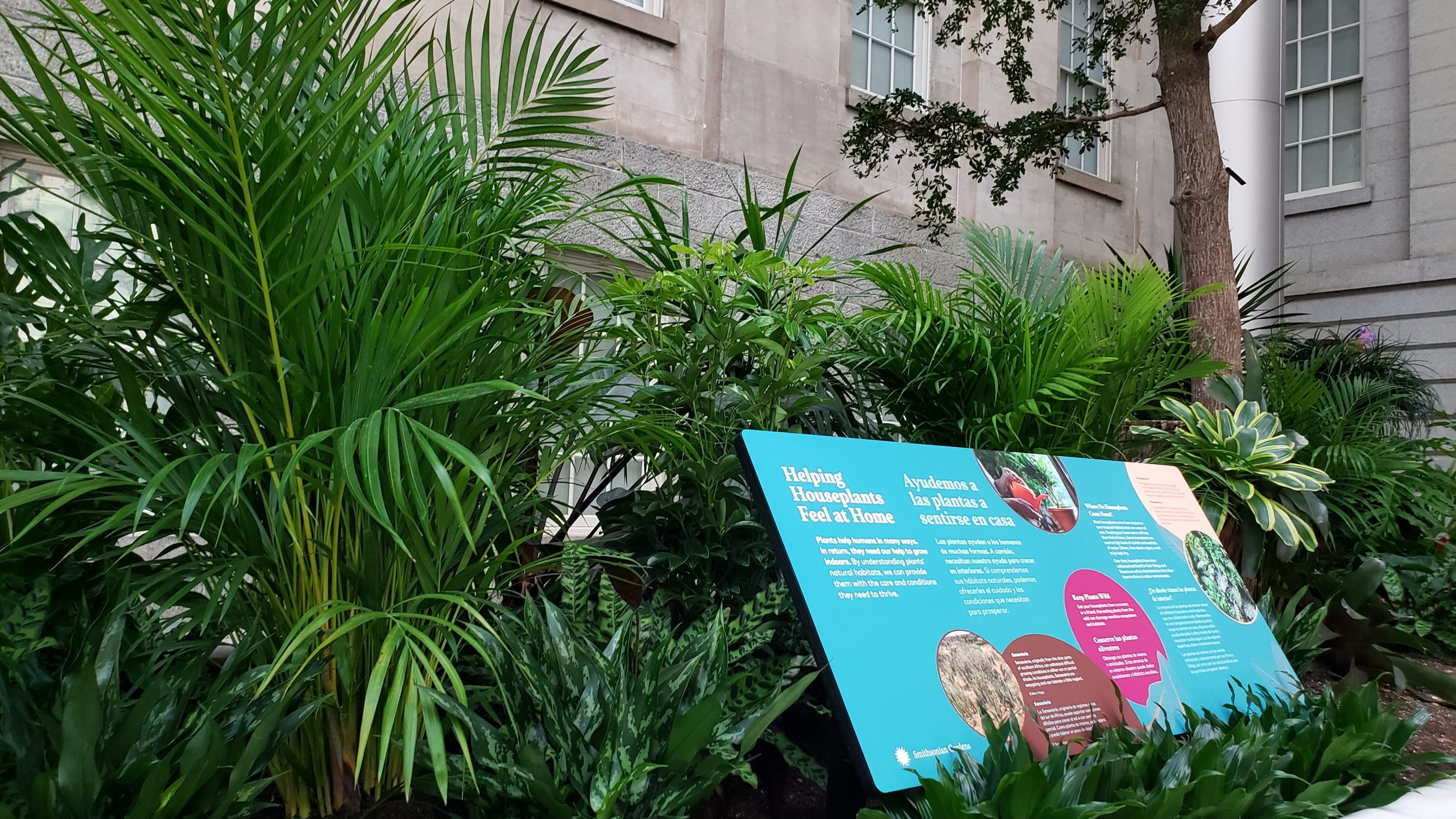 Helping Houseplants Feel at Home Panel at The Great Indoors Exhibition inside the Robert and Arlene Kogod Courtyard