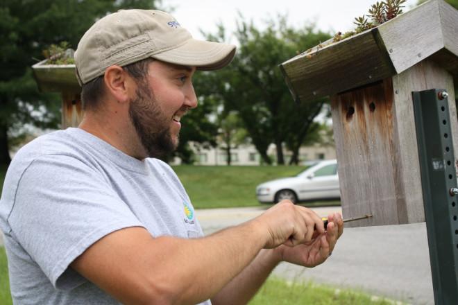 Greenhouse staff member accessing bird house
