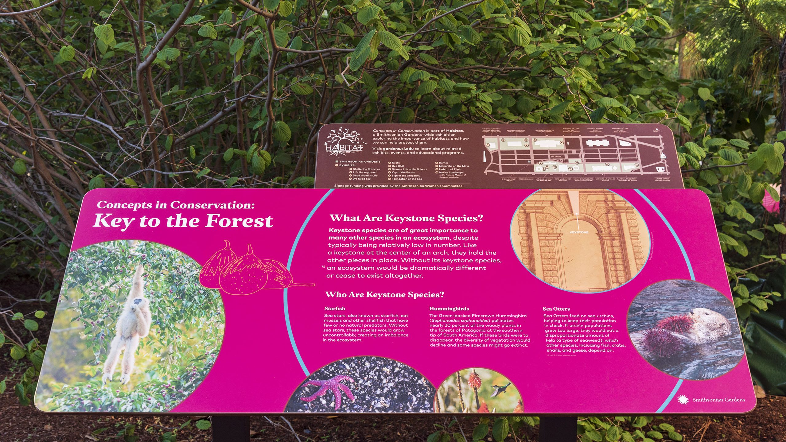 Habitat Exhibition, Concepts in Conservation, Key to the Forest in the Enid A. Haupt Garden