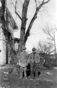 The Catalpa Tree on Napientek Homestead, Franklin, Wisconsin