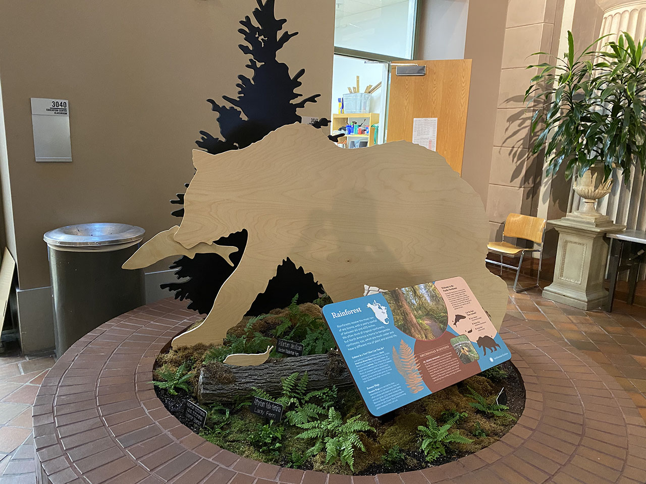 Temperate rainforest biome display showing a bear eating a salmon, the decomposition of which will nourish the soil, allowing plant life to thrive and ferns native to the Pacific Northwest.