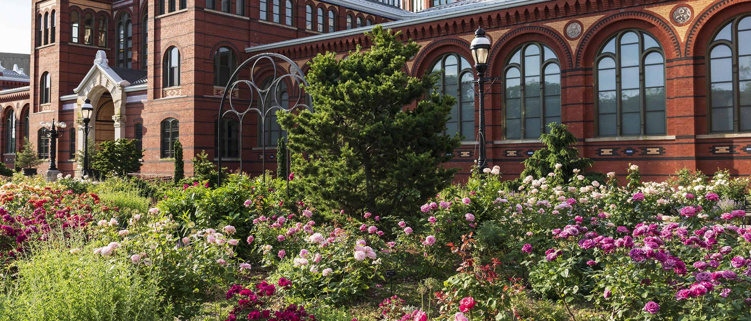 Kathrine Dulin Folger Rose Garden