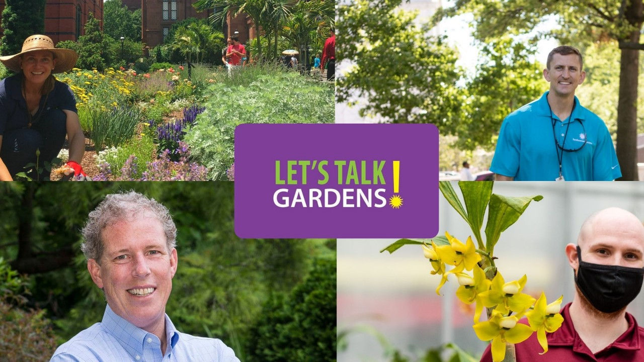 Let's Talk Gardens March 2021