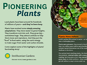 Pioneering Plants Interpretive Panels at the National Museum of American History