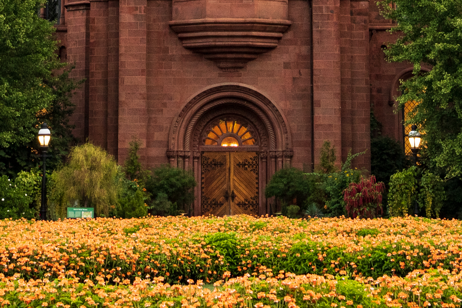 Doors of Smithsonian Castle with mass of orange flowers in front