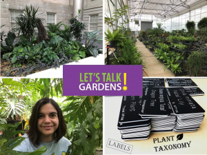 LTG - Houseplant Diversity