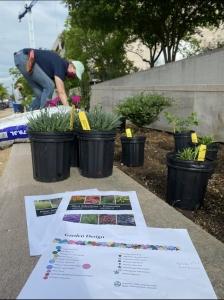 NASM Space Garden and installation of perennials