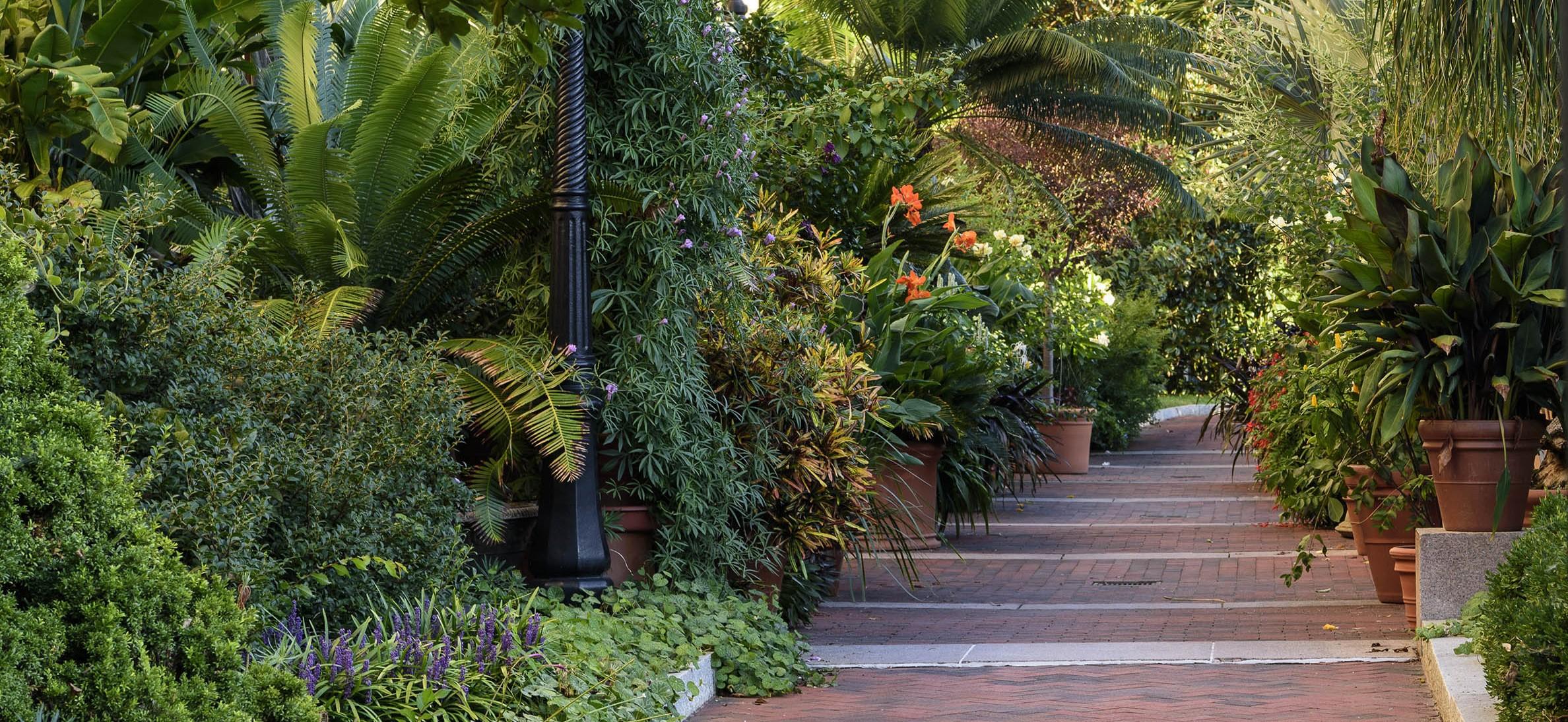 Enid A. Haupt Garden Freer Walkway