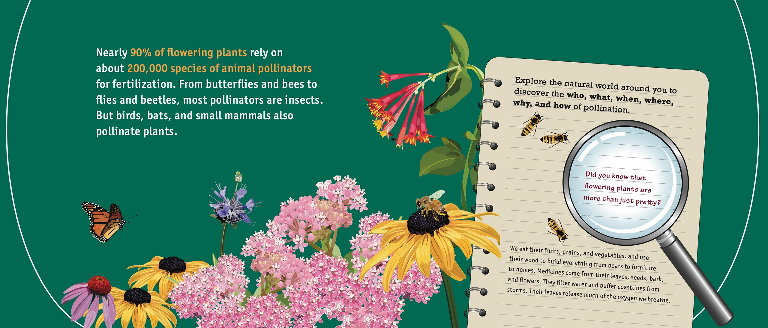 Pollination Posters